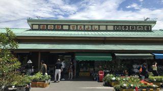 【道の駅すえよし】道の駅すえよしで行列のできるバイキングを食べてきた【レストラン四季祭】