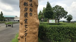 【鹿児島ウォーキングコース】おすすめのお散歩スポット【ランニング】